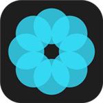 哈喽壁纸 v1.0 安卓版
